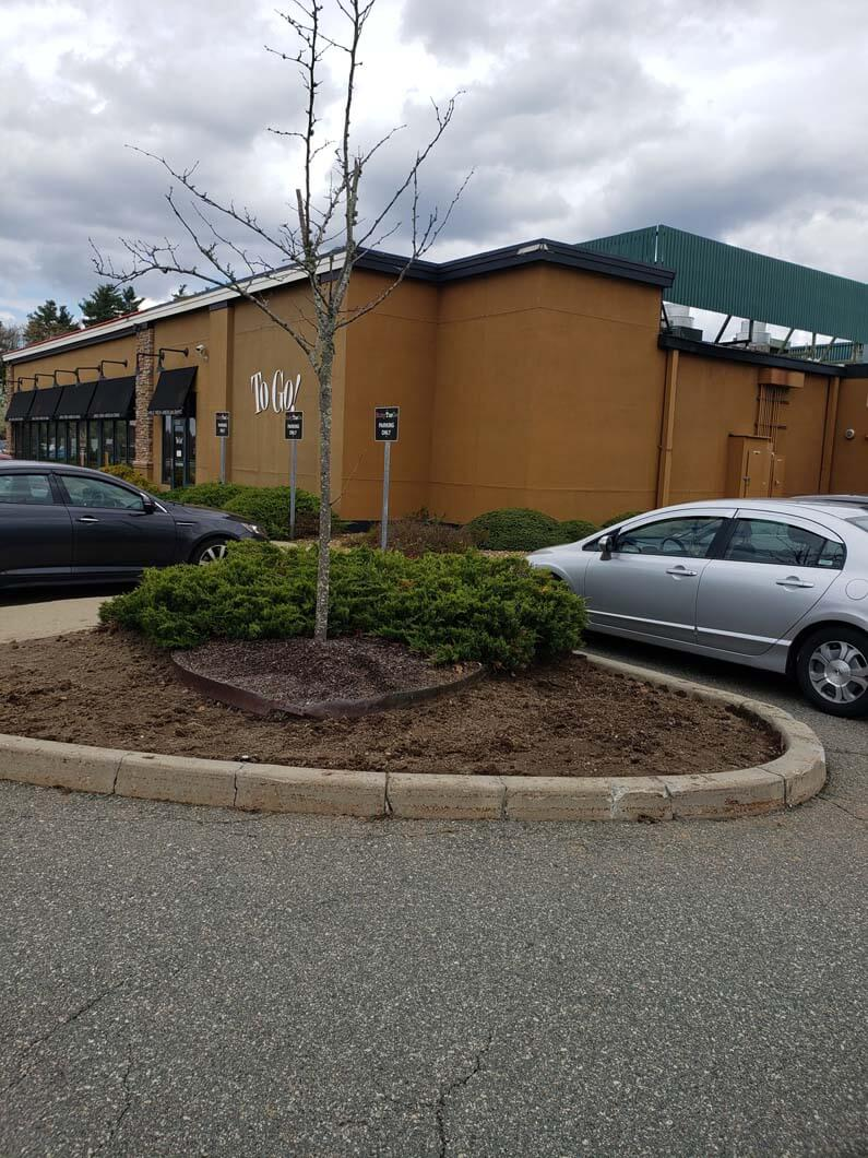 Ruby Tuesdays in Taunton, MA Mulching Job-2